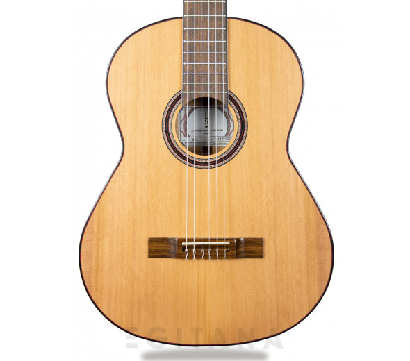 Guitarra clasica APC 8C