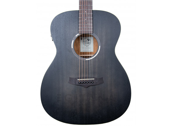 Guitarras Dreadnought Tanglewood TWBB OE EXPO